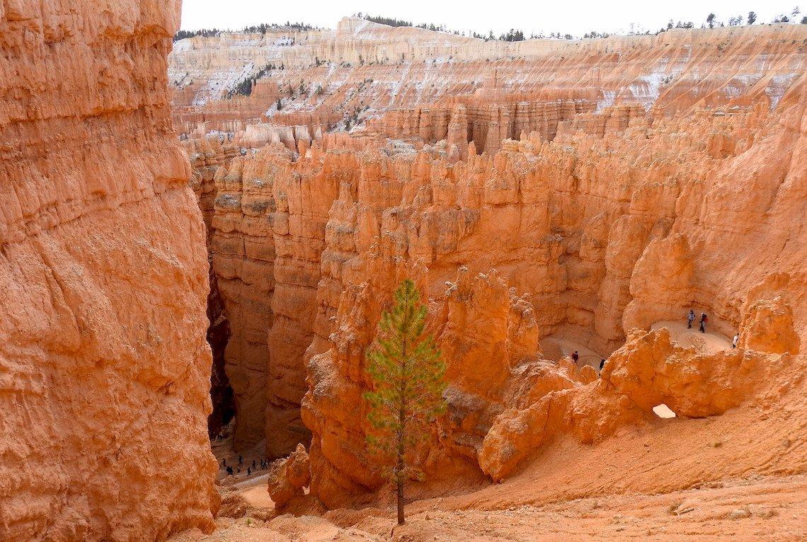 Navajo Loop Trail In Bryce Canyon National Park