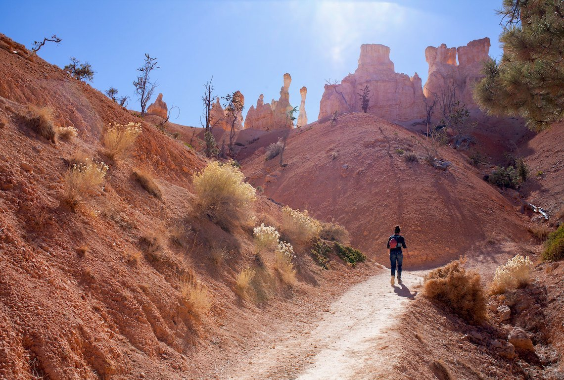 Peek-A-Boo Trail In Bryce Canyon