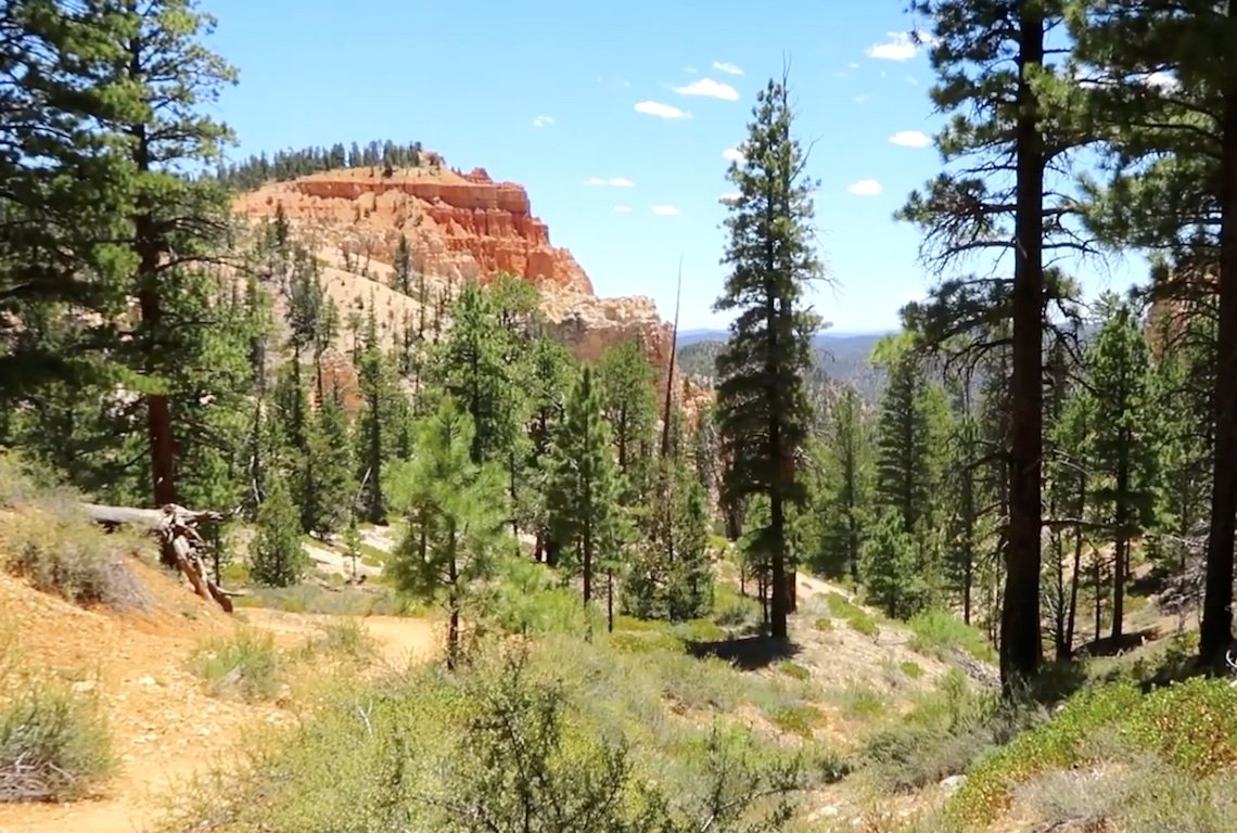 Sheep Creek and Swamp Canyon Loop Trail in Bryce Canyon