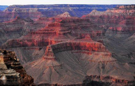 Grand Canyon Shuttle Bus
